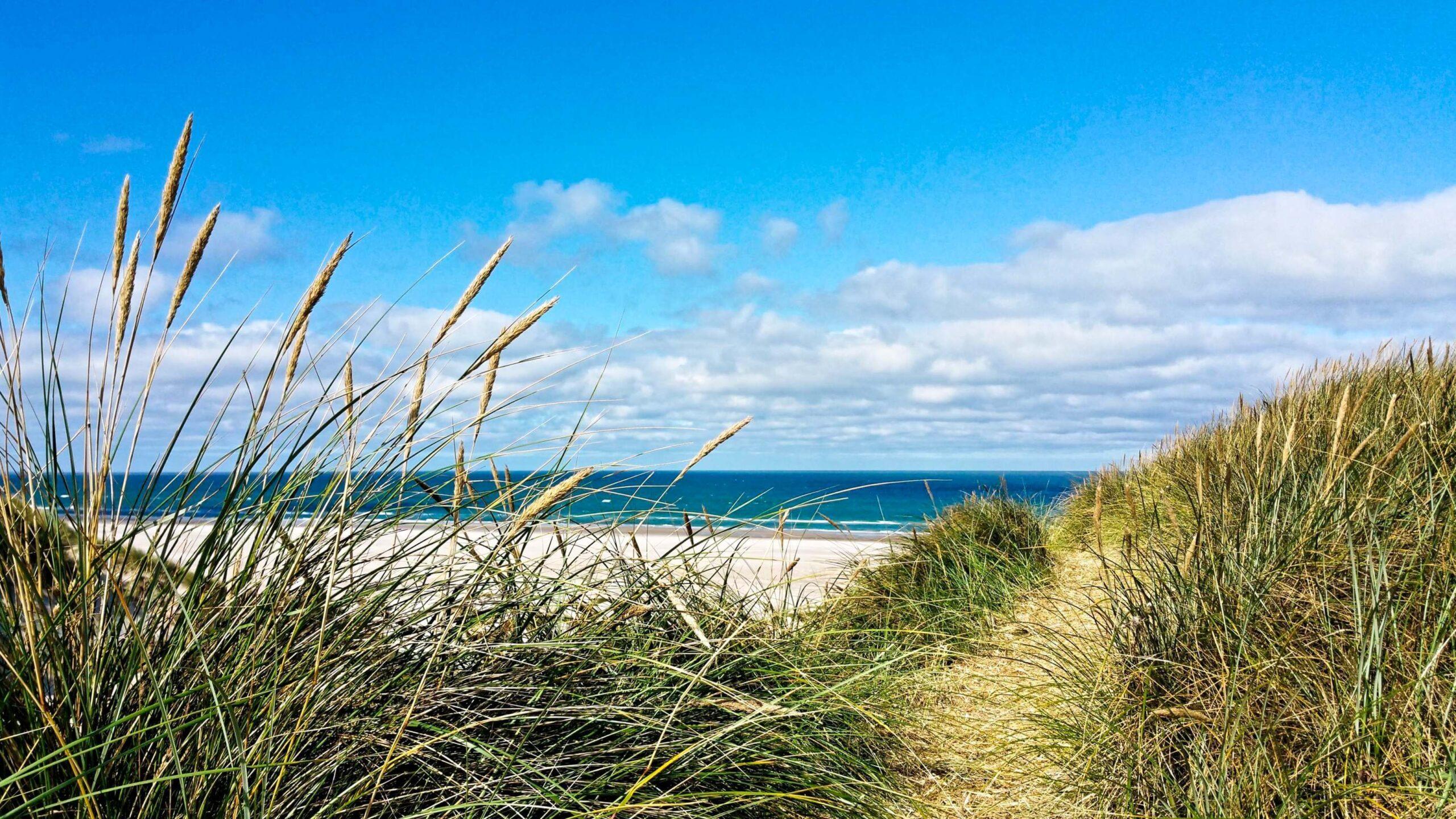 Sommerferie i Danmark: 3 ferier til 3 budgetter