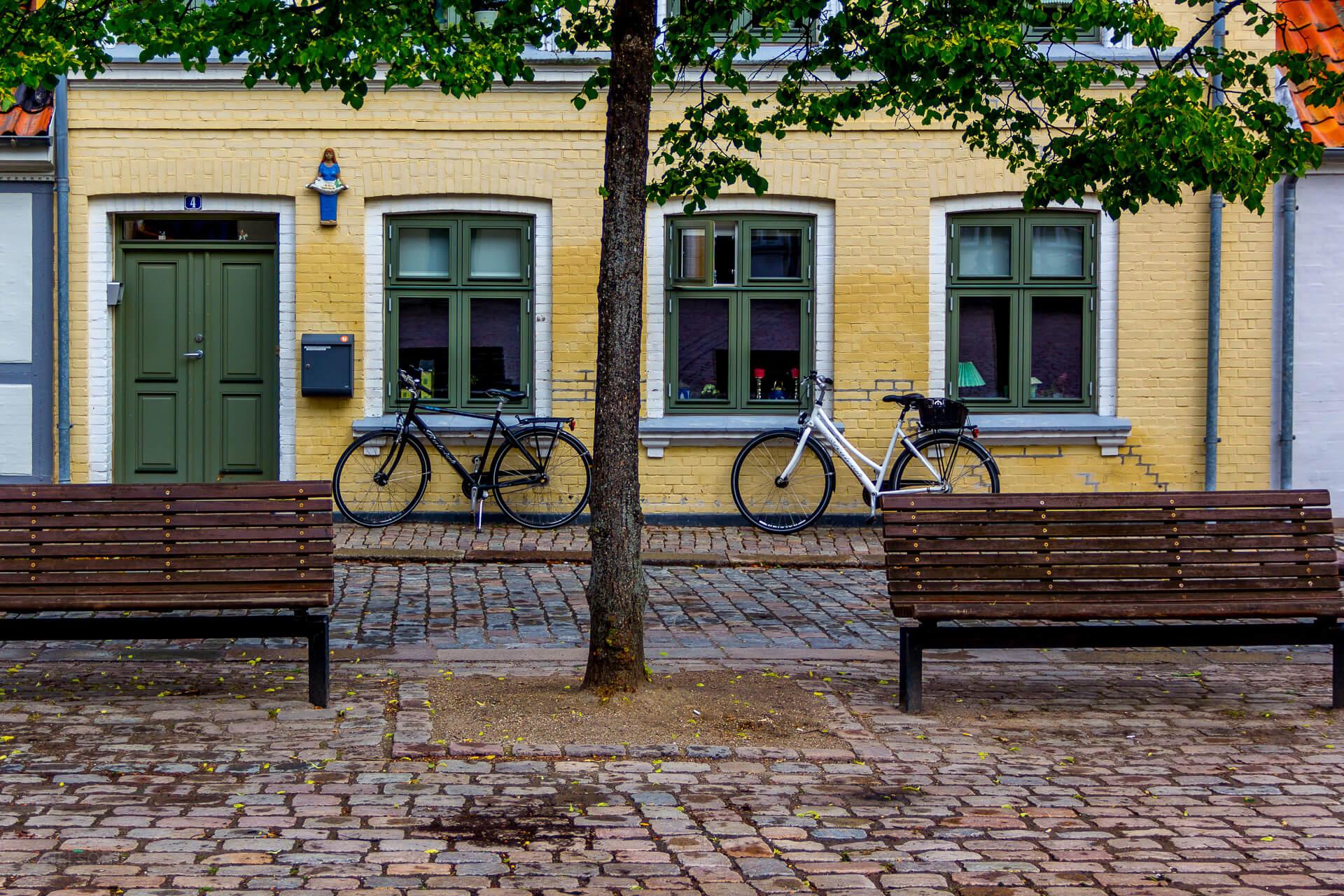 Studerende på SU: Odense